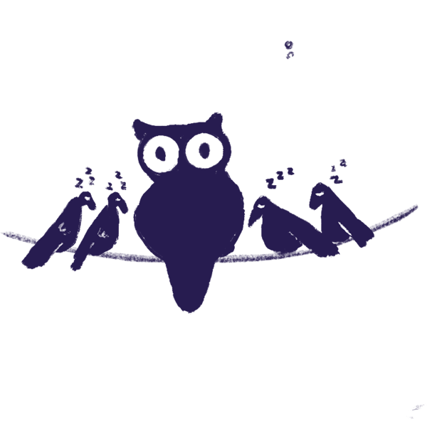 owl awake at all hours